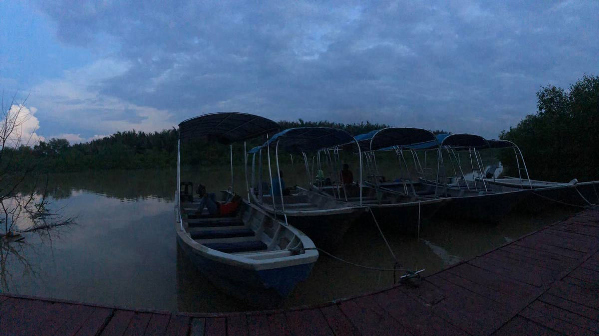 Boats for Firefly Trip